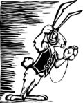 Bigstock_White_Rabbit_20007305
