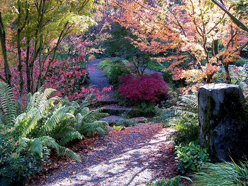 Bigstock_Broken_Path_Japanese_Grdn_1307013