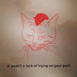 Fragile cat card